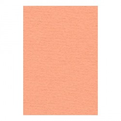 Papier A4 210 x 297 mm - 105 gr - Abricot