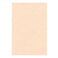 Papier A4 210 x 297 mm - 105 gr - Rose saumon