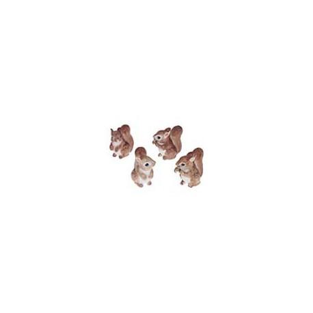 Ecureuils roux par 4