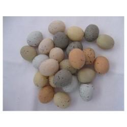 Oeufs d'oiseau en plastique, 2,5 cm, sachet 24 pces