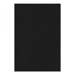 Papier A4 210 x 297 mm - 200 gr - noir de jais