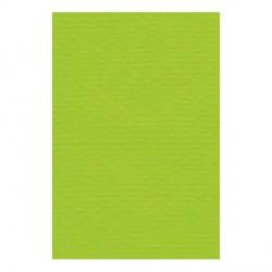 Papier A4 210 x 297 mm - 200 gr - Vert tendre