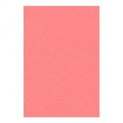 Papier A4 210 x 297 mm - 200 gr - Rose