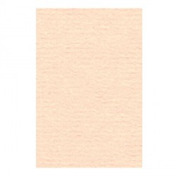 Papier A4 210 x 297 mm - 105 gr - Rose saumon