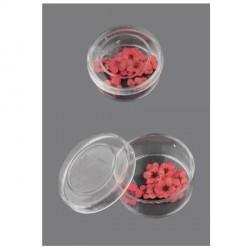 Boite de Fleurs séchées orange rose 9mm - 20 pièces