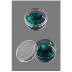 Boite de Fleurs séchées bleu d'azur 12mm - 20 pièces