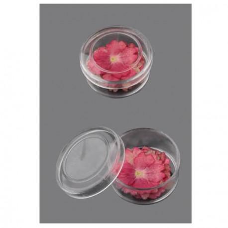 Boite de Fleurs séchées rose 18mm - 20 pièces