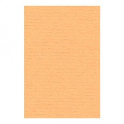 Papier A4 210 x 297 mm - 200 gr - Orange mangue
