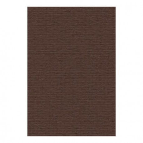 Papier A4 210 x 297 mm - 200 gr - Brun foncé