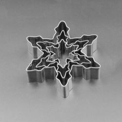 3 Emporte-pièces métalliques Etoiles des neiges