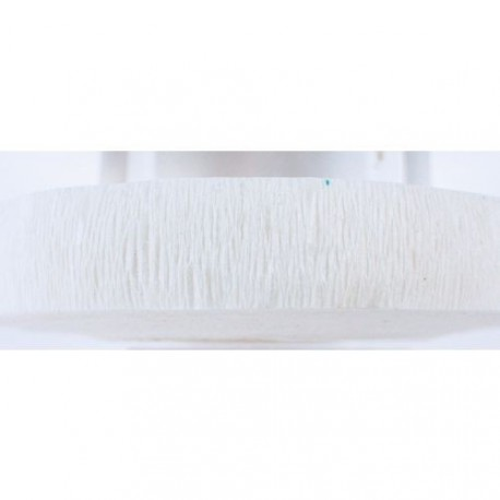 Ruban crépon-Flora, 26 mm, blanc