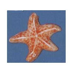 Motifs en cire, étoiles de mer