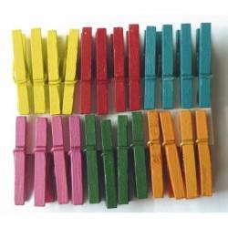 Mini Pinces àlinge multicolore 2,5 cm, 24 pièces