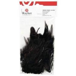 Plumes à la mode - noir - 10 à 15 cm