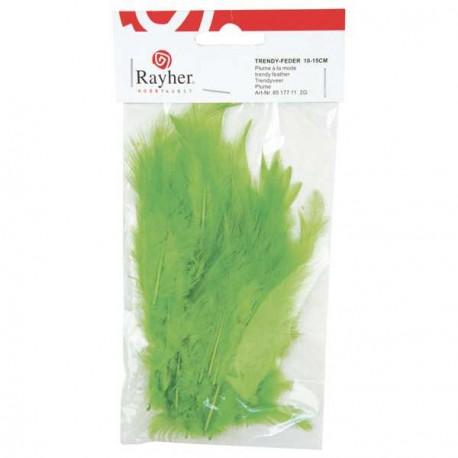 Plumes à la mode - vert - 10 à 15 cm sachet