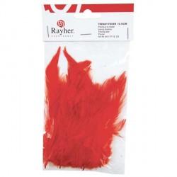 Plumes à la mode - rouge - 10 à 15 cm