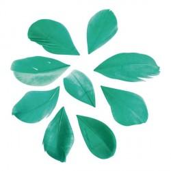 36 Plumes coupées - vert pin - 5 à 6 cm
